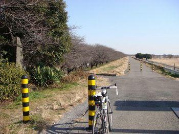 2011010907.jpg