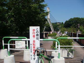 2011071008.jpg